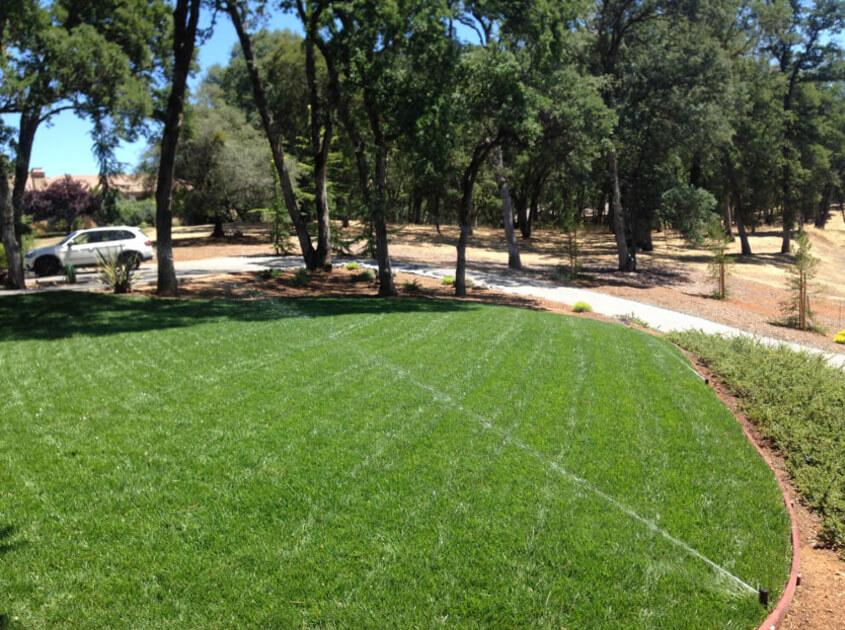 grass-landscape-lawn-in-moreno-valley-ca