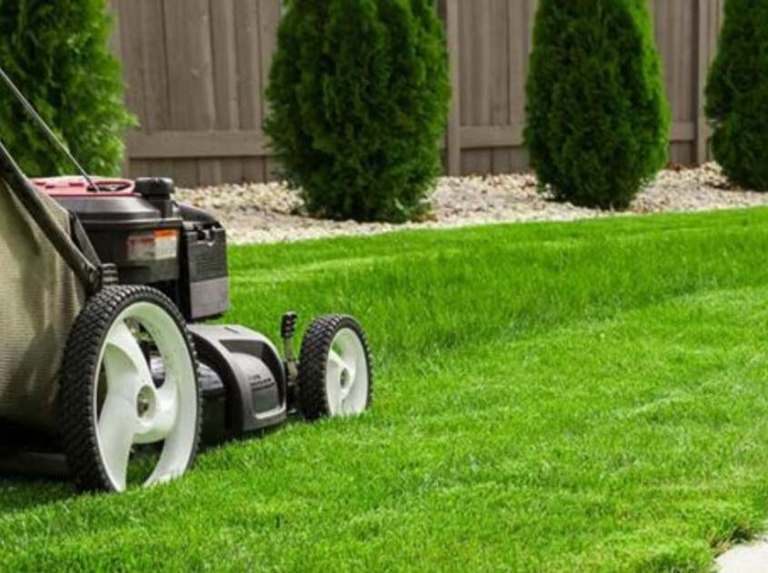 lawn-landscaping-yard-msr-orange-county-ca