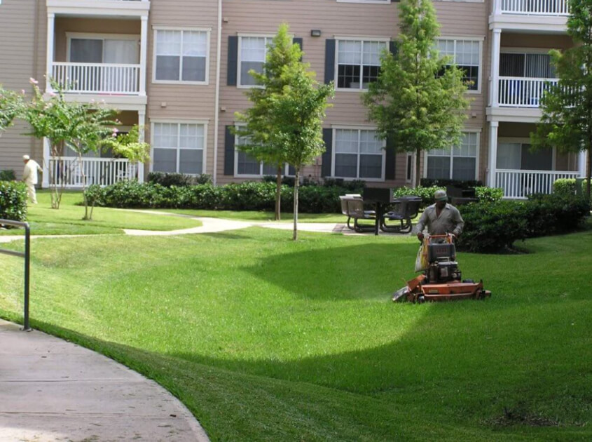 lawn-service-landscaping-in-ontario-ca