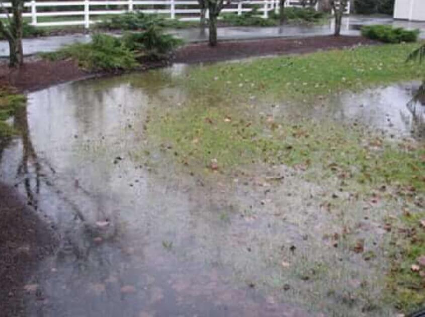 yard-drainage-water-puddle-in-pomona-ca